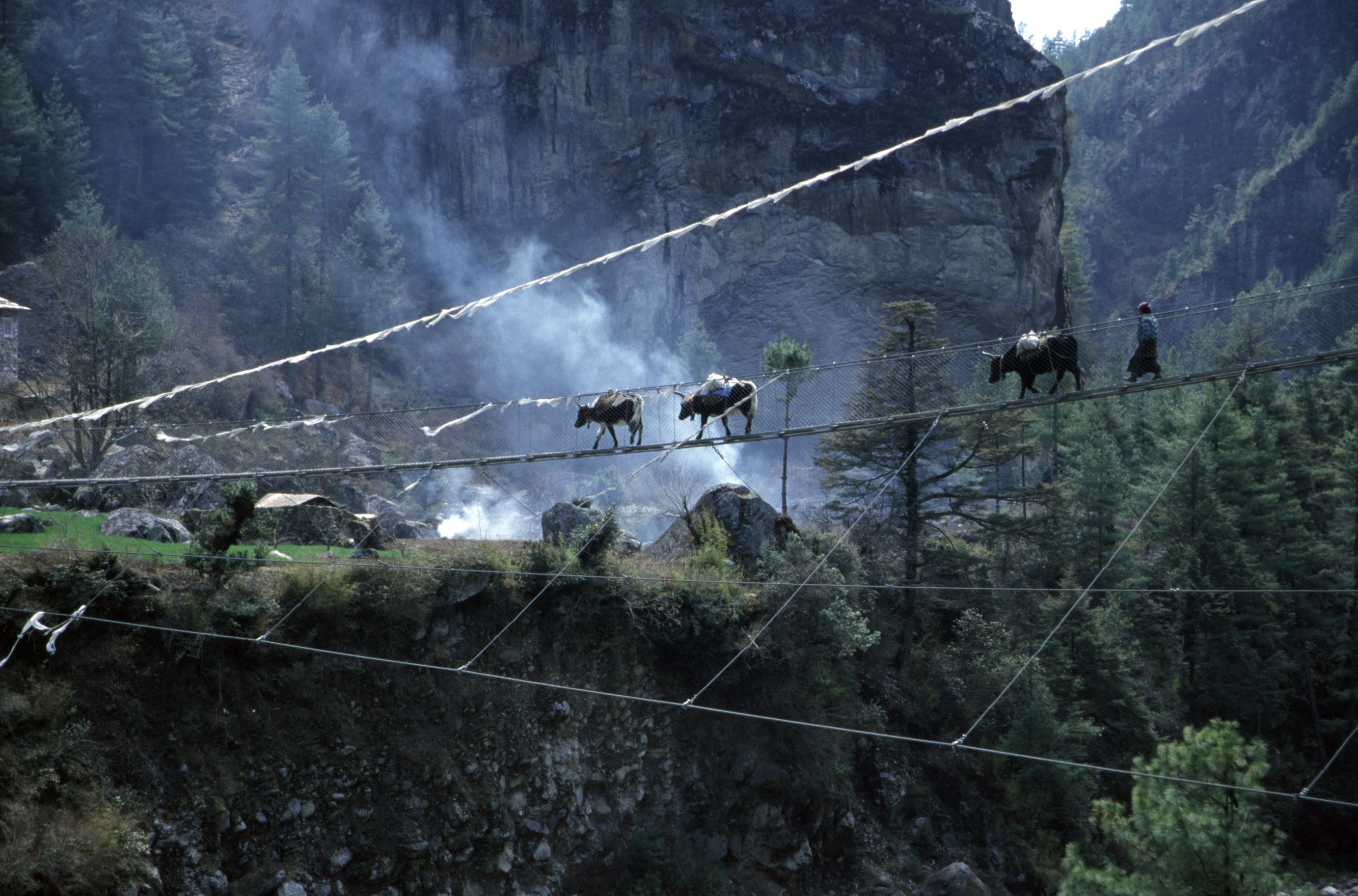 Suspension Bridge Nepal Himalaya